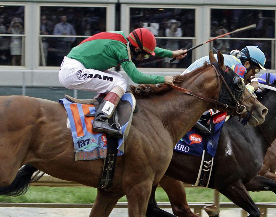 Animal Kingdom Kentucky Derby Winner
