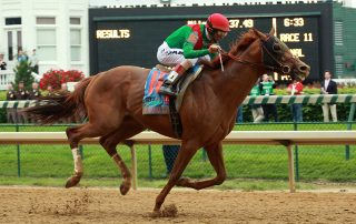 animal kingdom belmont stakes