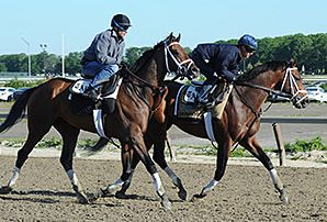 Norton Herrick's Racehorse 'Matterhorn' Joins Lineup for Belmont Stakes