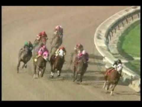 Calder Race Course - 10/12/08